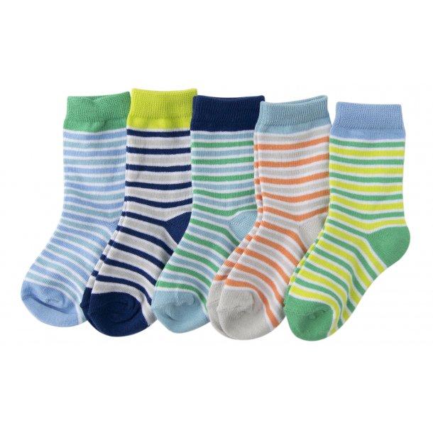 Melton - 5 Pack Socken in blaue, grüne und orange Farben